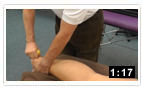 Achilles Tendon insertion